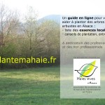 flyer de promotion du site jeplantemahaie.fr